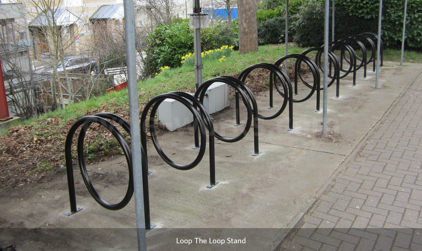 Looped Cycle Stand
