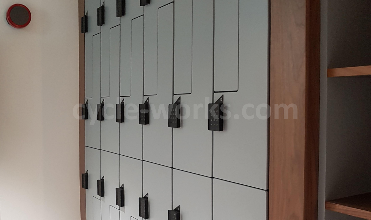 Ateepa Changing Room Lockers with Electronic Locking Keypad